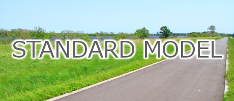 standard-model-logo